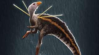 Ilustração de dinossauro, com aparência de bico de pato e cauda de esquilo