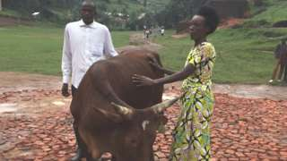 Amiel Mbarubukeye and Delphine with a cow