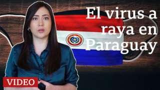 Ana María Roura