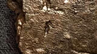 Fingerprint on a fragment of pottery
