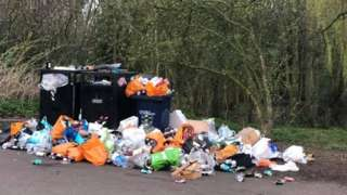 Bins overflowing with litter