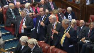 Peers during a recent vote in the House of Commons