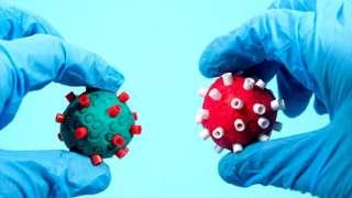 क्ले मॉडेल- कोरोना विषाणू