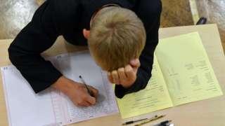 GCSE pupil