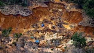 Illegal mining camp near the Uraricoera river
