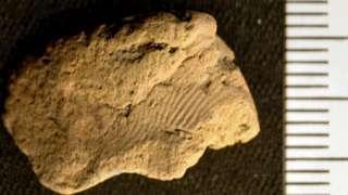 Fingerprint on piece of pottery