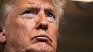 Donald Trump at White House coronavirus briefing