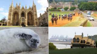 Peterborough Cathedral; Newmarket; Horsey seal pup; Grayson Perry's House For Essex with Port of Felixstowe in background
