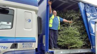 Volunteer with Christmas trees