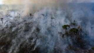 آتشسوزی آمازون