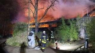 German zoo - monkey house burnt down