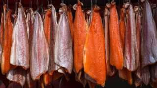 Salmon hanging from hooks to be smoked