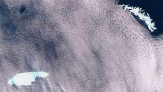 A68 se descolou da Antártida há três anos