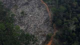 An aerial view of a deforested plot of the Amazon. File photo