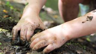Stock image of a child with muddy hands