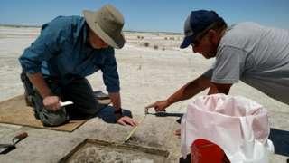 Археолози су семенке пронашли у пустињи Великог сланог језера