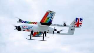 Apian drone