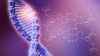 Спіраль ДНК