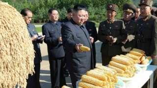 ဓါတ်ပုံ ၁။ ။ ယခင် သုံးဆတက်ထားတဲ့ မြောက်ကိုရီးယားပြောင်းဆန် ဈေးနှုန်းဟာ လက်ရှိ ဇွန်လလယ် အတွင်းမှာလည်း သိသိသာသာ ထပ်မံ မြင့်တက်ခဲ့