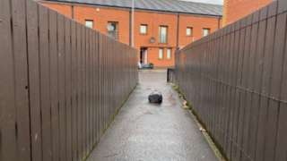 Alleyway near Clandeboye Street in Belfast