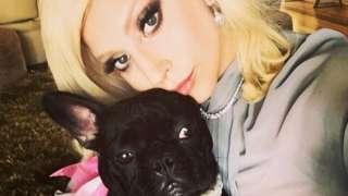 Lady Gaga and her bulldog, Miss Asia. File photo