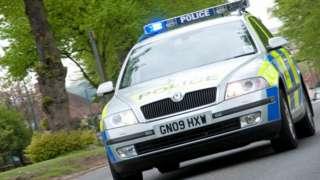 Police car (generic)
