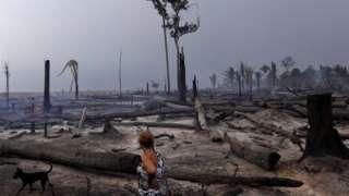 Mulher olhando floresta queimada