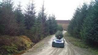 Car leaving Cloceanog forest