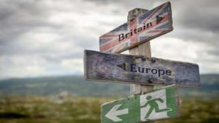 Britain, Europe and exit text with flag on wooden signpost outdoors in nature, emergency sign to symbolise Brexit