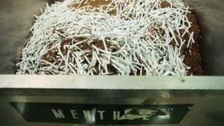 производство ментоловых сигарет