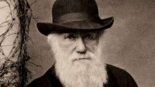 ချားလ်စ်ဒါဝင်ဟာ သဘာဝတရားကြီးရဲ့ ပြောင်းလဲနေတဲ့ ဆင့်ကဲဖြစ်စဥ်သီအိုရီကို သေသေချာချာလေ့လာခဲ့တဲ့ပညာရှင်ကြီးဖြစ်ပါတယ်။