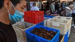 A market selling prawns in Wuhan