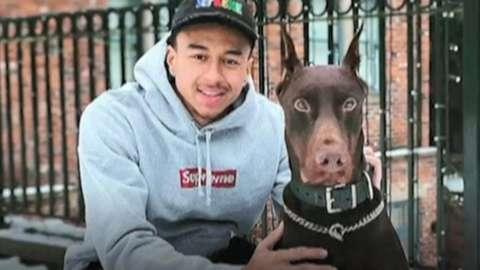 Footballer Jesse Lingard and his dog with cropped ears
