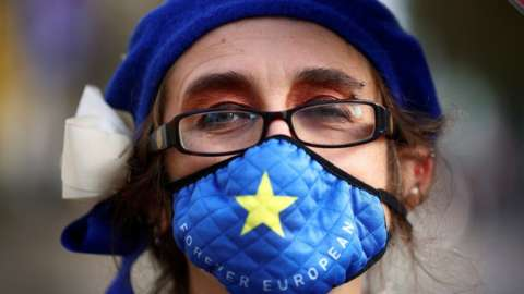An anti-Brexit protester demonstrates near the conference centre where Brexit trade negotiations are taking place, in Westminster, London, Britain, November 13, 2020.
