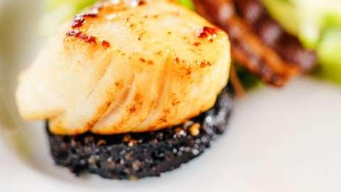 Black pudding and scallop