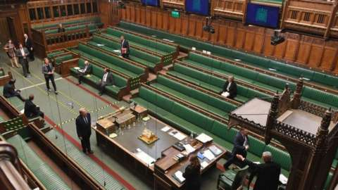 MPs lining up to vote
