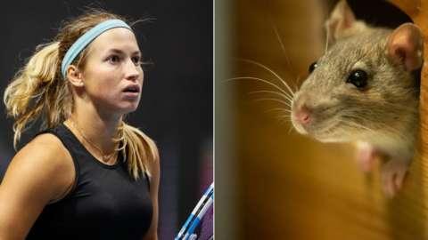 Split pic of Yulia Putintseva and a mouse