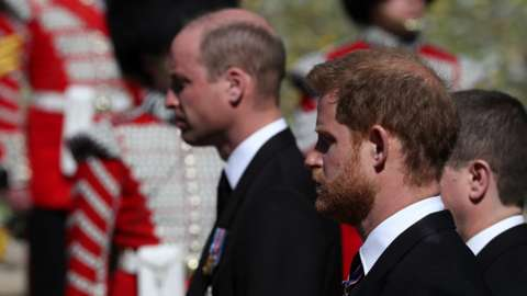 The Duke of Cambridge (background, left) and the Duke of Sussex