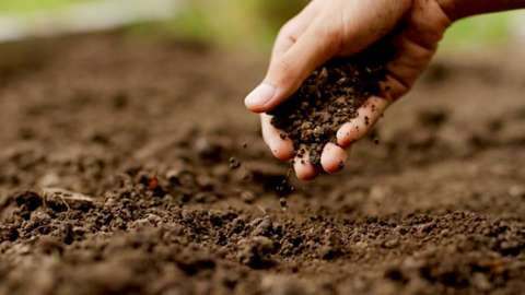 A hand holding some soil