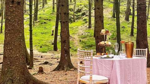 Table set for tea-for-two in remote woodland in the Lake District
