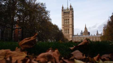 Houses of Parliament seen from autumnal Victoria Tower Gardens