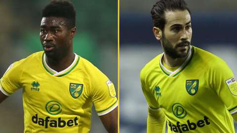 Alex Tettey and Mario Vrancic in action for Norwich