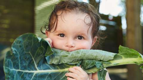 Child eating giant leaf