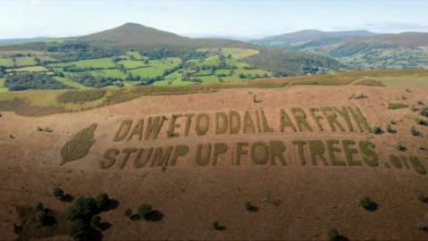 Stump up for trees slogan on hillside