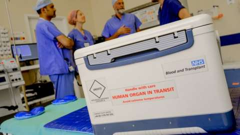 A transplant box in a surgery theatre