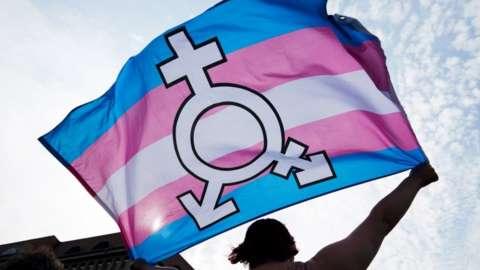 Trans and gender diverse flag