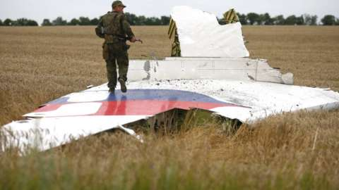 An armed pro-Russian separatist stands on part of the wreckage of the Malaysia Airlines Boeing 777 plane on 17 July 2014