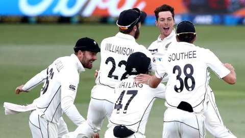 New Zealand celebrate final wicket
