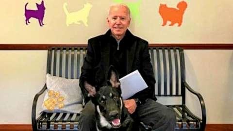Joe Biden with his German Shepherd dog