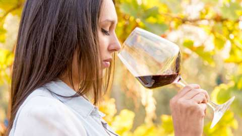 Woman in a vineyard looking into a glass of red wine
